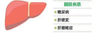 臓器疾患:糖尿病・肝硬変・肝線維症