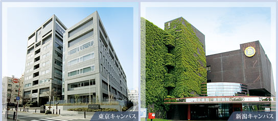THE NIPPON DENTAL UNIVERSITY